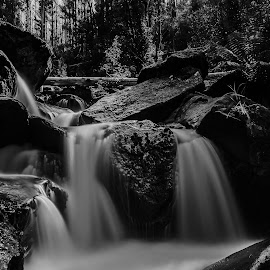 Dark BW by Peter Nguyen - Nature Up Close Water ( waterfalls, black and white, bw, rock, photography,  )