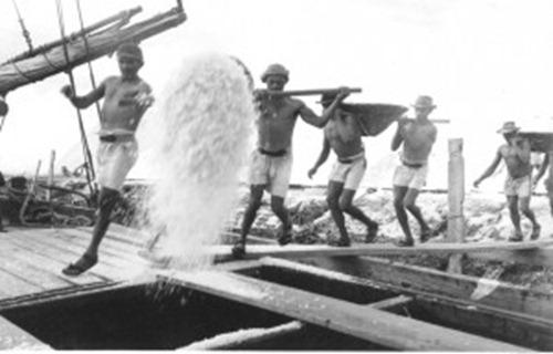 Lavoratori nella salina, Salinopolis - Parà, foto: o baù de macau