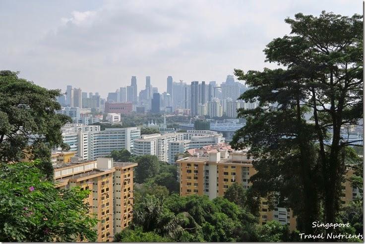 新加坡花柏山 (11)