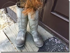 Eastern Shore boots