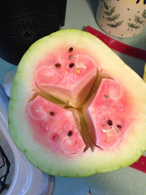 hollow-heart-watermelon-3