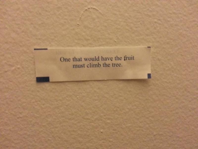 fortune cookies 1 (12)
