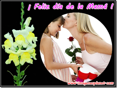 dia de la madre (2)