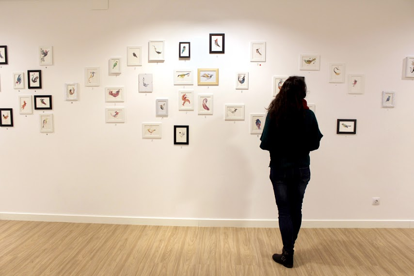61-pajaros-adolfo-serra-bosque-maga-colibri-exposicion-literatura-infantil-juvenil