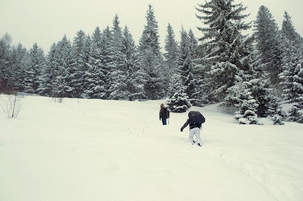 карпаты зима зимний поход