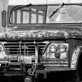 Power Wagon  by Todd Reynolds - Black & White Objects & Still Life