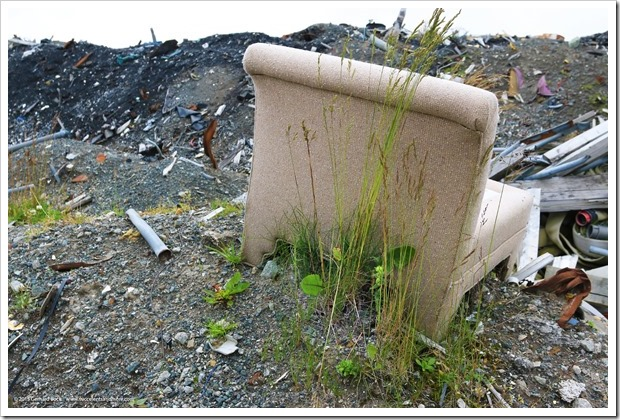 150907_Adak_dumped_chair_with_grasses_WM