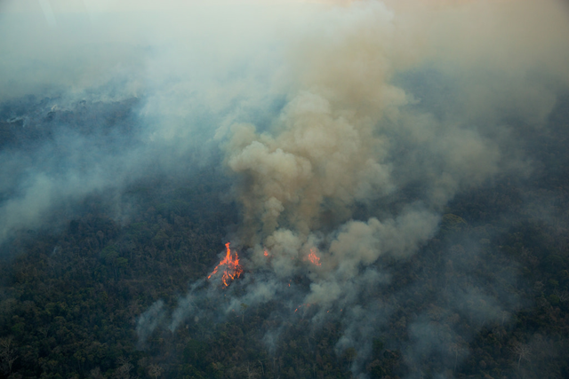 Aerial view of forest fires in the Indigenous Land (TI) Arariboia, located in Maranhão State, home to 12,000 Guajajaras and about 80 isolated individuals of the Awá-Guajá people, 24 October 2015. The fire has already lasted two months and is the largest ever recorded in Brazilian indigenous lands. About 45 percent of 413,000 hectares of land have been destroyed. Photo: Marizilda Cruppe / Greenpeace