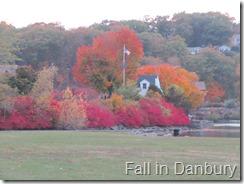 132 The Fall in Danbury