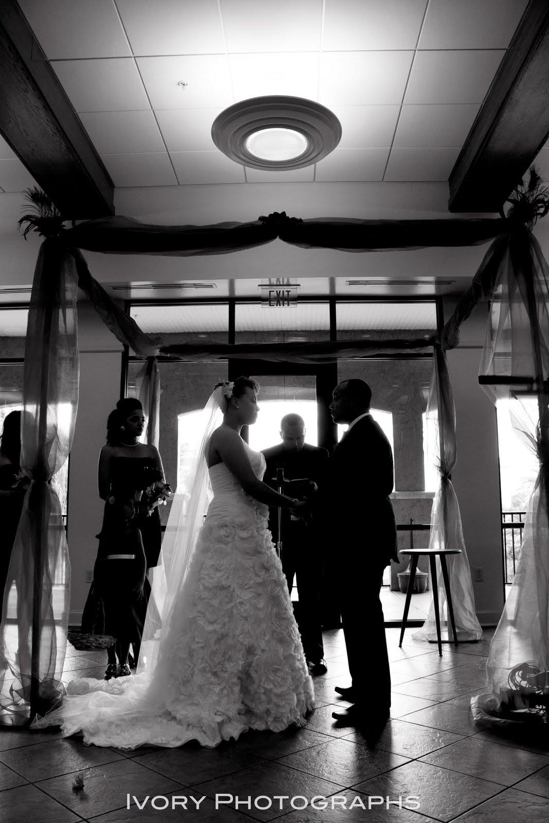 Wedding Trend (Peacock
