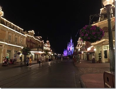 Walt Disney World (20)