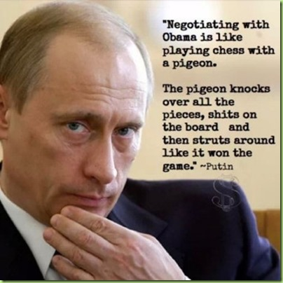 putin plays chess with his pigeon