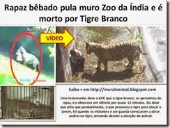Rapaz bêbado pula muro Zoo da Índia e_thumb[1]