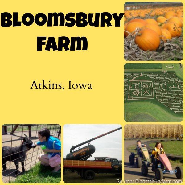 Bloomsbury Farm
