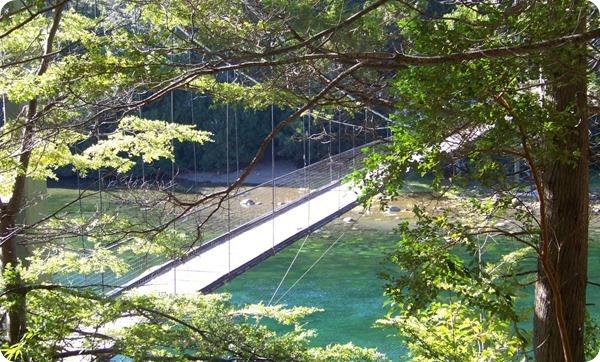 Parque-Nacional-Los-Alerces-Pasarela-sobre-Rio-Arrayanes_thumb[2]