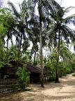 Tu, jak wszędzie, ludzie mieszkają w chatkach bambusowych...
