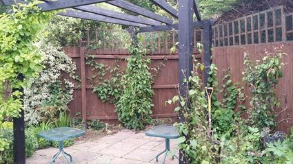 Garden - May 2015