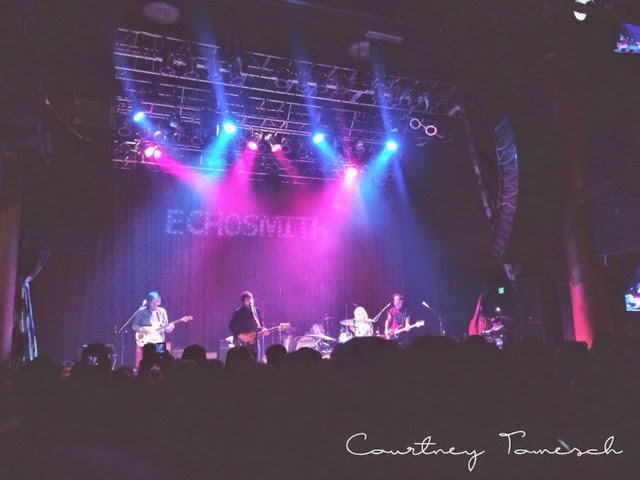 The Colourist House of Blues San Diego