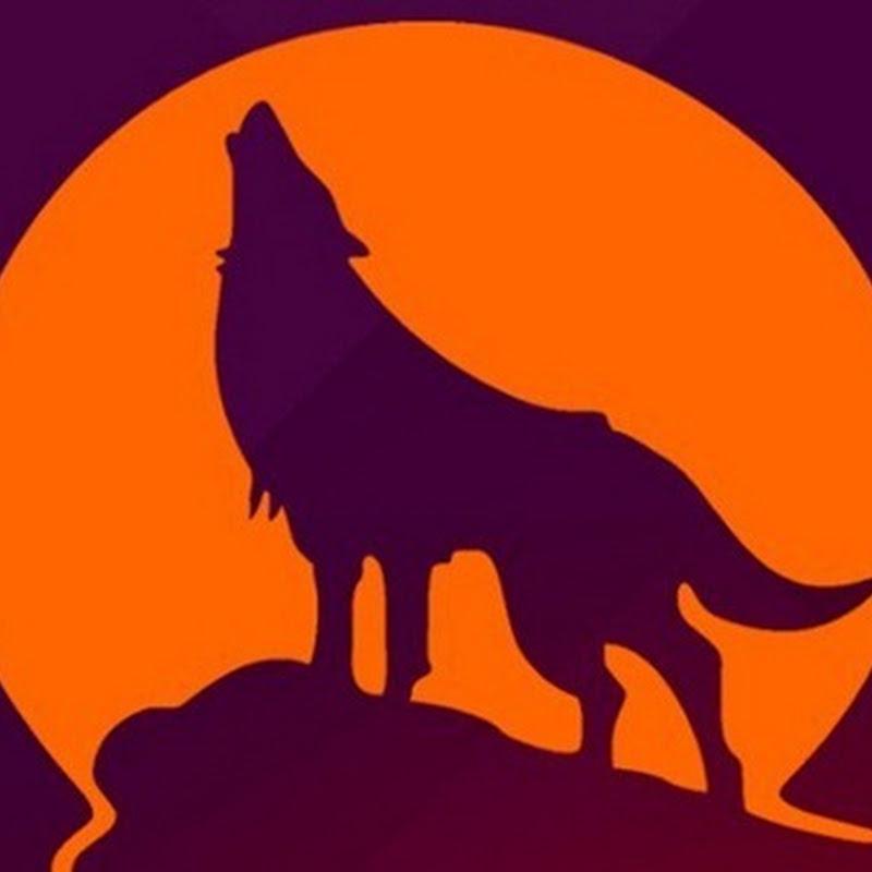Lanzada Ubuntu 15.10, la última versión de la distribución Linux más famosa.