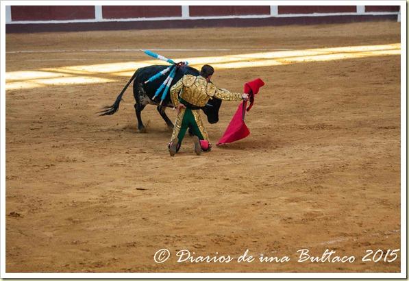 Toros Feria 2015-9871