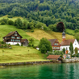 Switzerland - on the Lake of The Four States by Radu Eftimie - Landscapes Mountains & Hills ( water, houses, forrest, mountain, lake of the four states, switzerland )