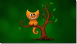 gatos divertidos buscoimagenes (11)