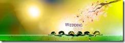 Indian wedding bridal album templates 8