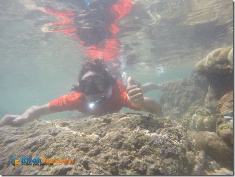 Snorkeling Pantai Nglambor Kisah Foto Blog05