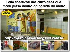 gato_metro