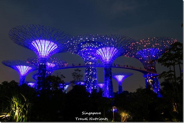 新加坡超級樹燈光秀 (19)