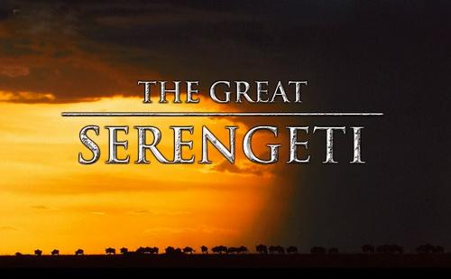 Wielka R�wnina Serengeti / The Great Serengeti (2010) PL.DVBRip.XviD / Lektor PL