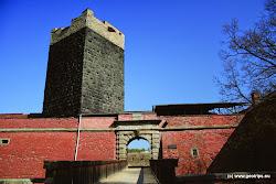 V 15. století se hrad dočkal rozšíření o hospodářskou budovu, která se stala osudnou pro důstojníky generalissima Albrechta z Valdštejna,kteří zde byli během hostiny dne 25. února 1634 zavražděni. Sám Albrecht se nedostavil, přesto se mu stal osudným Pachelbelovský dům, ve kterém byl ubytován. Ten se nachází v dolní části náměstí a dnes slouží jako muzeum. V 18. stol.byl hrad dvakrát obléhán a poničen a po následném požáru města v 19. století se změnil ve zříceninu. Dnes hrad užívá Krajské muzeum Cheb. Nachází se zde archeologická expozice a výstava o historii kamnářství. Černá věž je postavenaz lávových kamenů, pocházejících ze sopky Komorní hůrka nedaleko odtud.