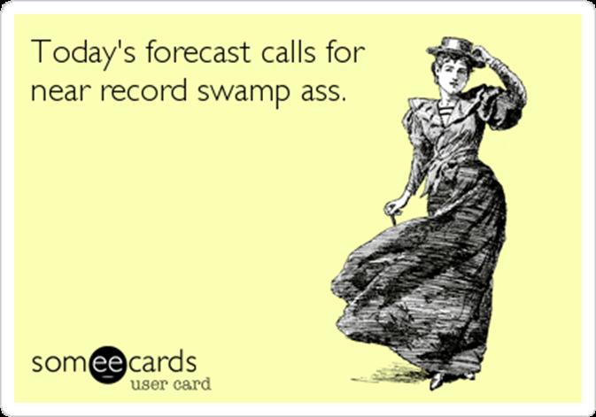 heat-wave-swamp-ass-someecards