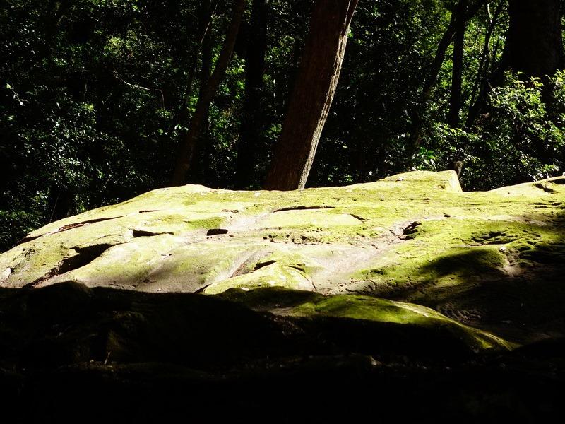 2014_0101-0105 萬山神石、萬山岩雕順訪萬頭蘭山_0806