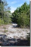 LP Trailview