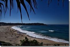 Sydney (5) (Medium)