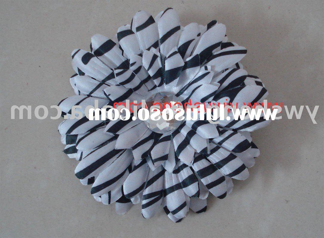 zebra daisy flower daisy