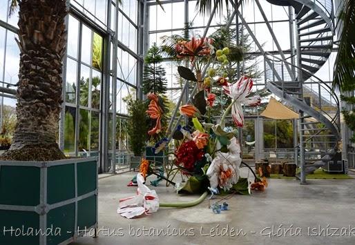 Glória Ishizaka - Hortus Botanicus Leiden - 5