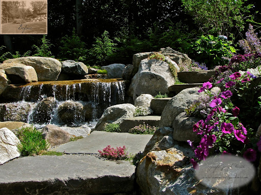 http://www.summersetgardens.comThese natural stone slab steps lead up to the newly installed spa (out of view). To the left is the upper tier waterfall which will eventually empty into the swimming pool. Alpine perennials and a few annuals are planted in all of the available crevices.This landscape architectural design & swimming pool project is in Franklin Lakes New Jersey. Serving New York & New Jersey <br />845-590-7306 <br />You can see more of my work at <br />http://www.youtube.com/user/summersetgardends