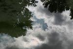 Parc de Belleville : reflet dans le bassin