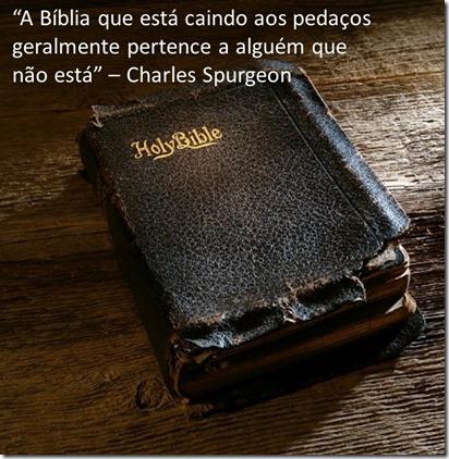 Bíblia em pedaços