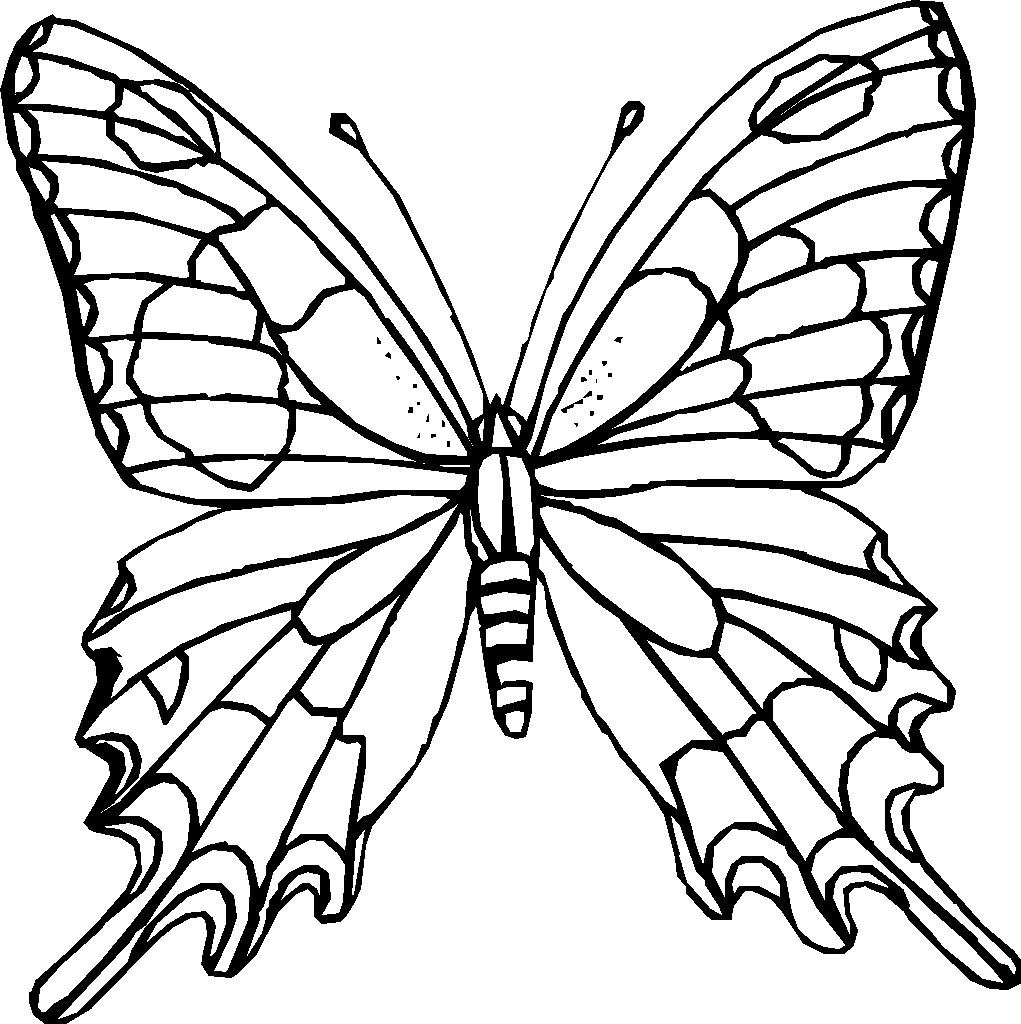 Free Butterfly Coloring Pages Education  - coloring pages flowers and butterflies