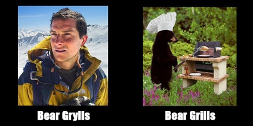 Mmmm, bears...
