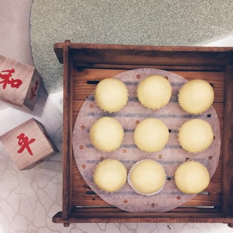 Best steamed custard egg yolk bun singapore