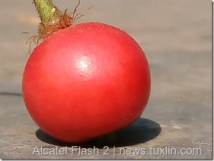 Kamera Alcatel Flash 2 vs Meizu M2 Note