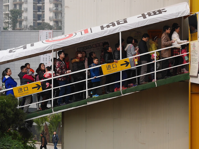 "line up stairs with signs saying ""Imported"""