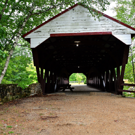 Covered Bridge by Liz Rosas - Buildings & Architecture Other Exteriors ( new hampshire, forest, creek, covered bridge, woods, river )
