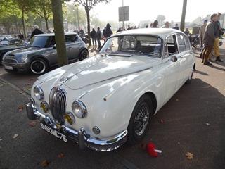2015.10.04-005 Jaguar