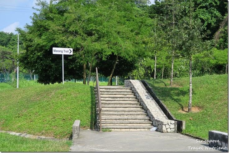 新加坡花柏山 (3)