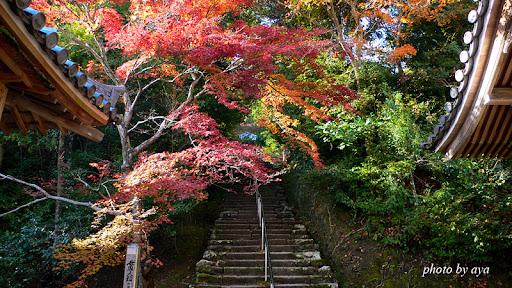 本堂奥の階段